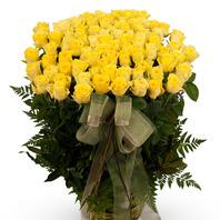 슬프도록 아름다운 노란장미